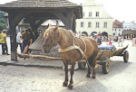 This is at the town square of the scenic town of Kazimierz Dolny.