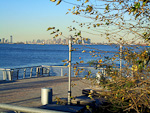 Manhattan seen from the shores of Staten Island.