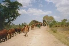 Rural Somalia