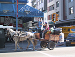 This kind of horse carts were used to collect garbage from the city.