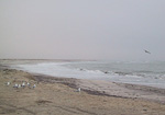 North of Swakopmund there are sandy beaches, but always a fog.