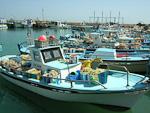 Ayia Napa harbour.