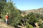 Anton in Figueroa Mountains, near Neverland.