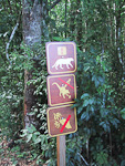 To get to the falls, you can take a train from the Visitors Center, or walk through the forest, as I did. Along the paths, there are signs warning against dangerous animals.