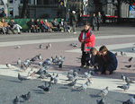 As other cities, Barcelona has its share of pigeons.
