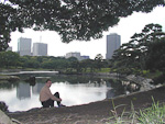 The Hama Rikyu Garden was earlier used as hunting grounds for ducks by the shoguns (military rulers of Japan before 1868).