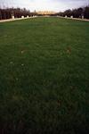 A small lawn.