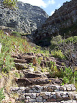 The trail to the top of Table Mountain.